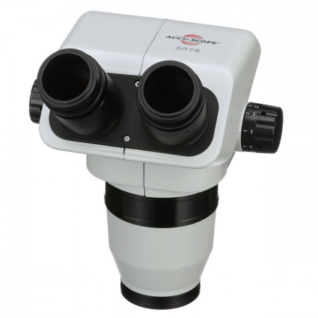 Binocular Viewing Head